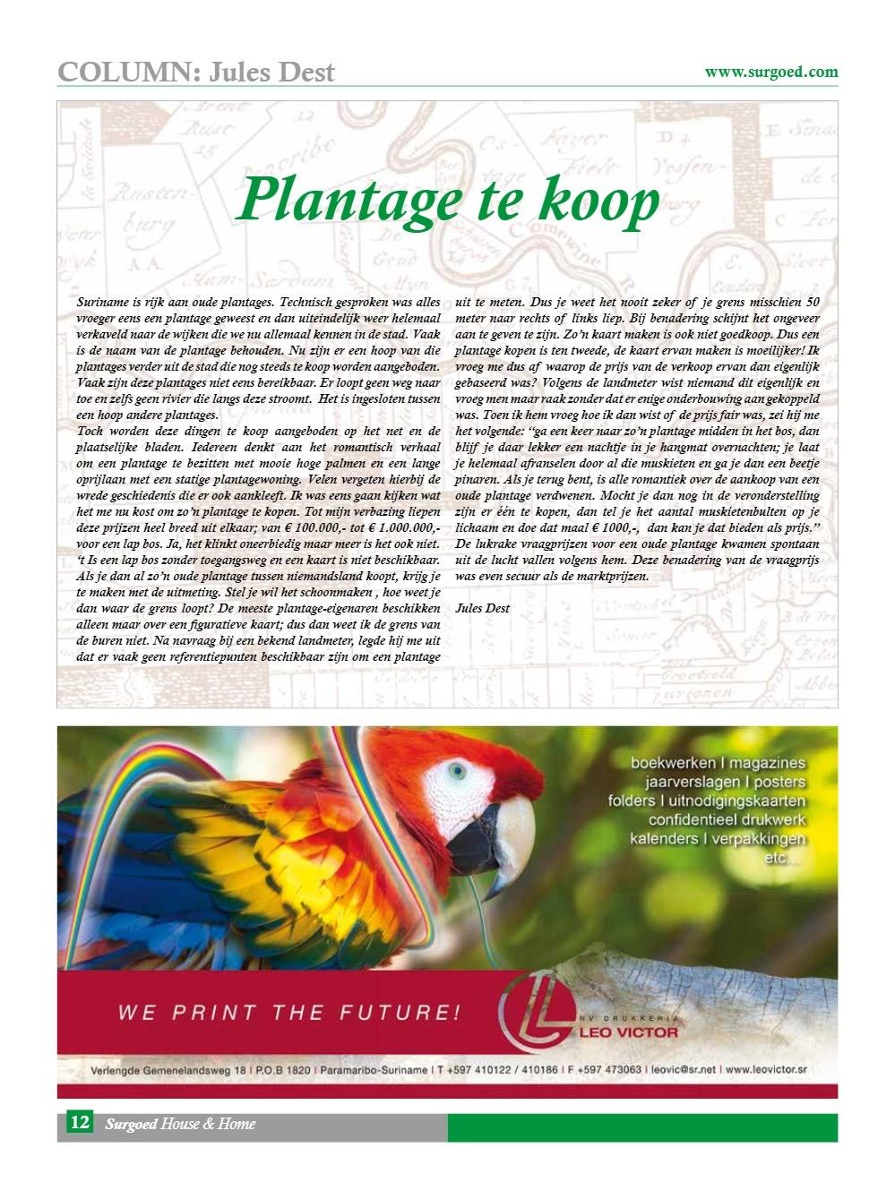 Plantage te koop
