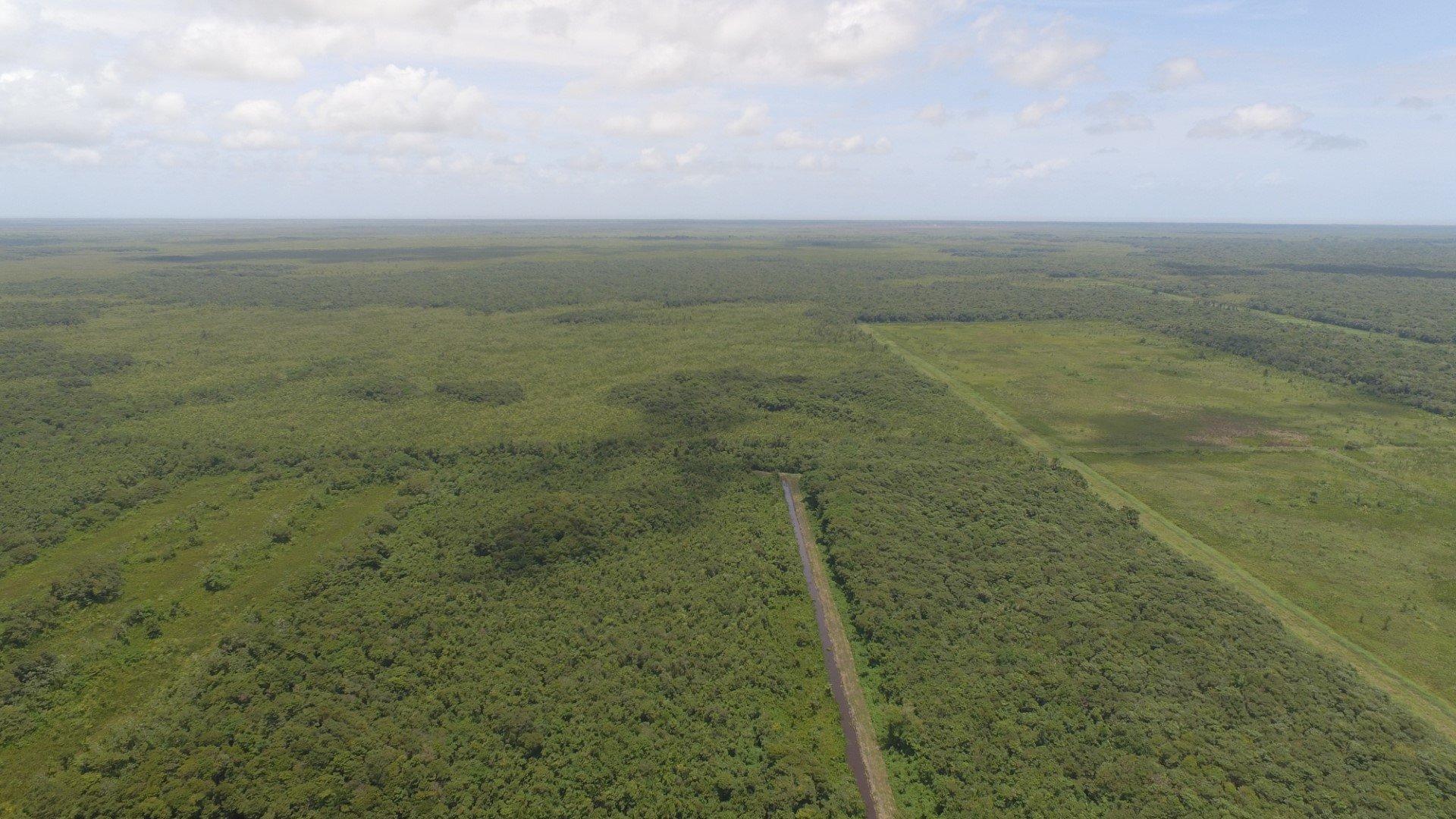 Wayamboweg 126-135 - Zesde Rijweg - 507 ha grondhuur bestemd voor landbouw en veeteelt - Surgoed Makelaardij NV - Paramaribo, Suriname