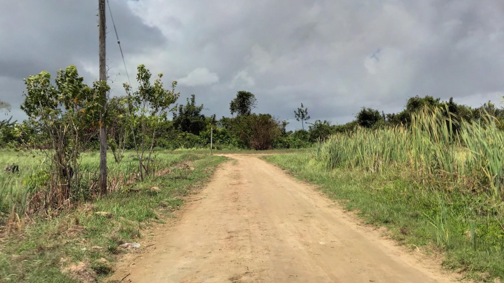 Masoemanweg - Prachtige bouwkavel te Lust en Rust in de aanbieding - Surgoed Makelaardij NV - Paramaribo, Suriname