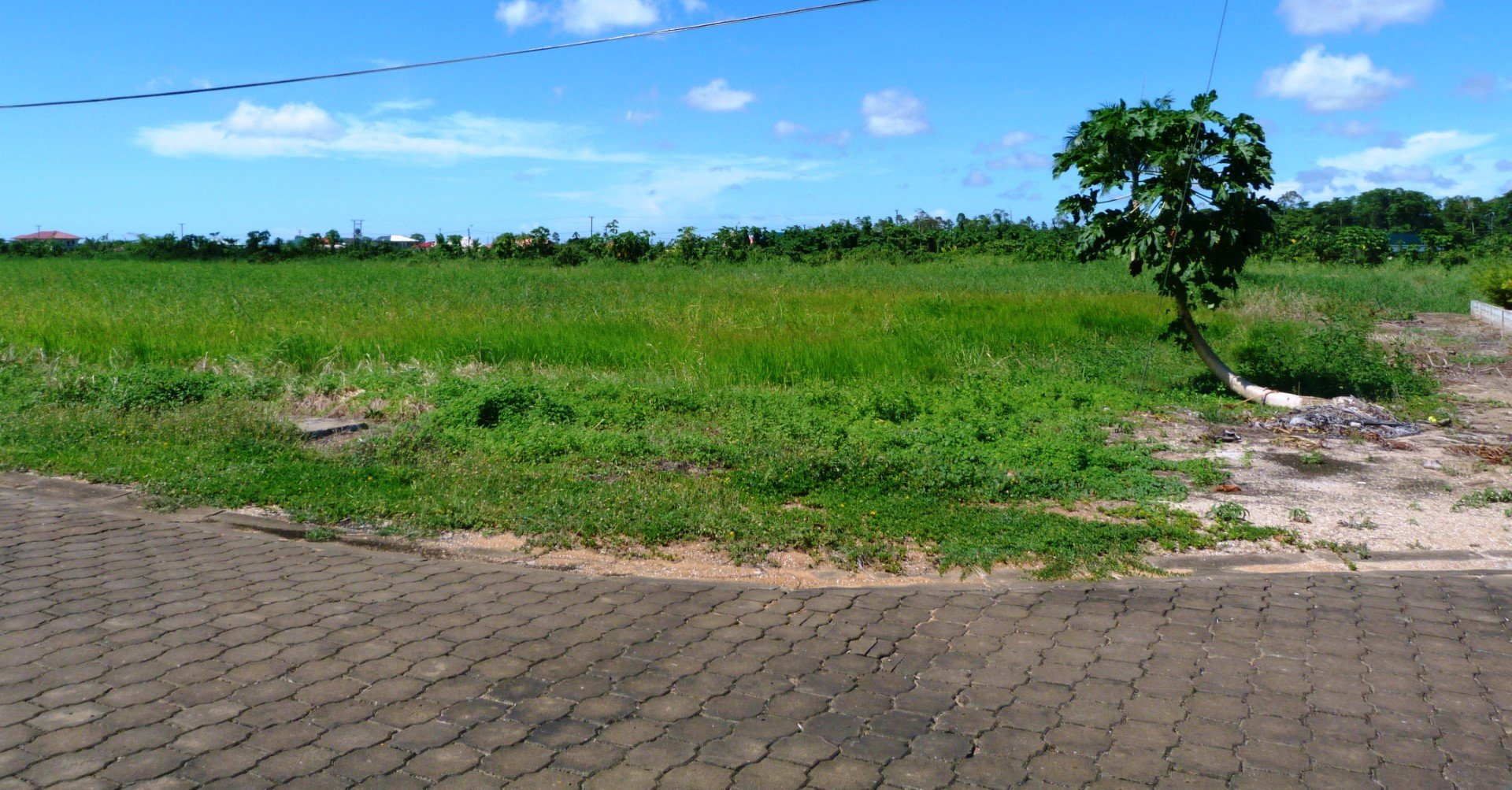 Palm Village 16 - Terrein op 50 meter afstand van de zee. Voel de zwoele zeewind! - Surgoed Makelaardij NV - Paramaribo, Suriname