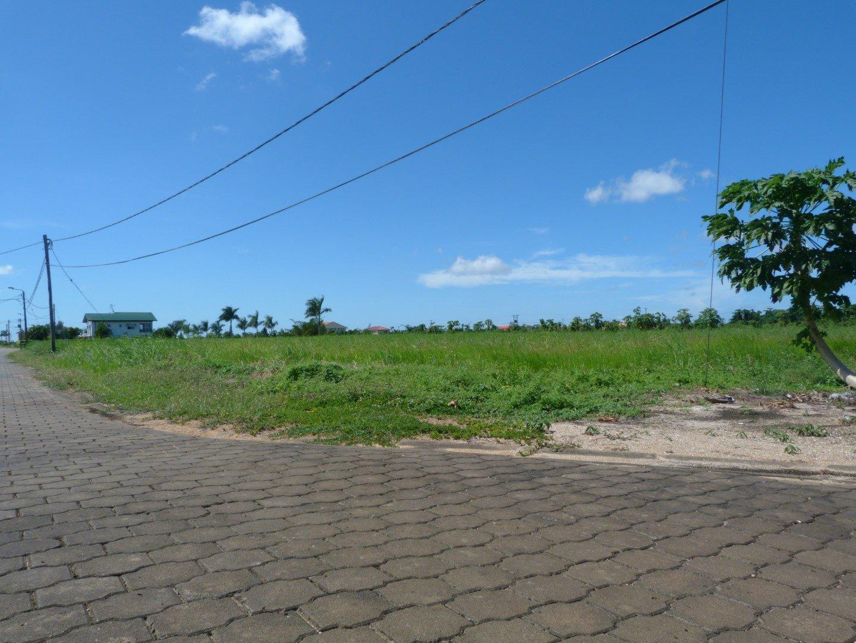 Palm Village 16 Commewijne Surgoed Makelaardij NV P0514B3 3 - Palm Village 16