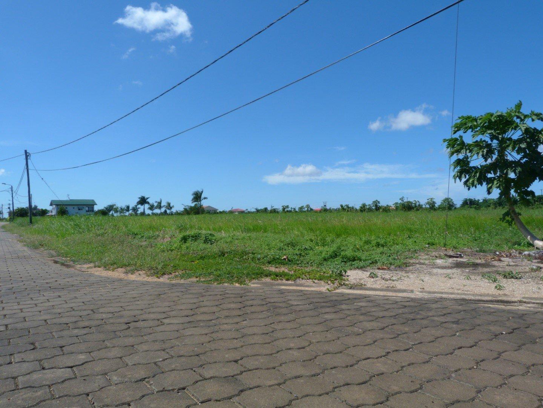 Palm Village 16 Commewijne Surgoed Makelaardij NV P0514B3 4 - Palm Village 16