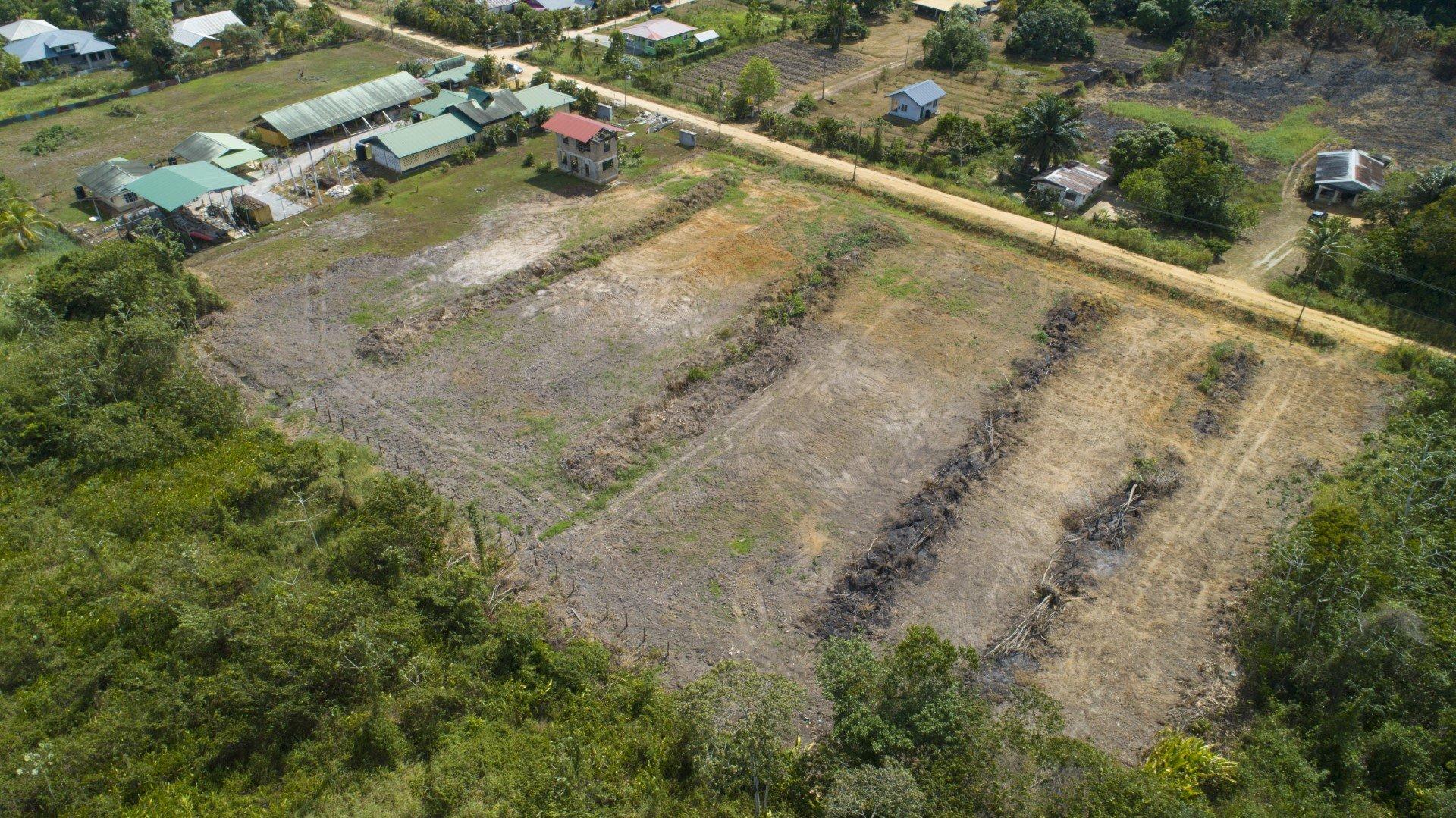 Talsmastraat 89 - Prachtige ruime kavel in een groene omgeving - Surgoed Makelaardij NV - Paramaribo, Suriname