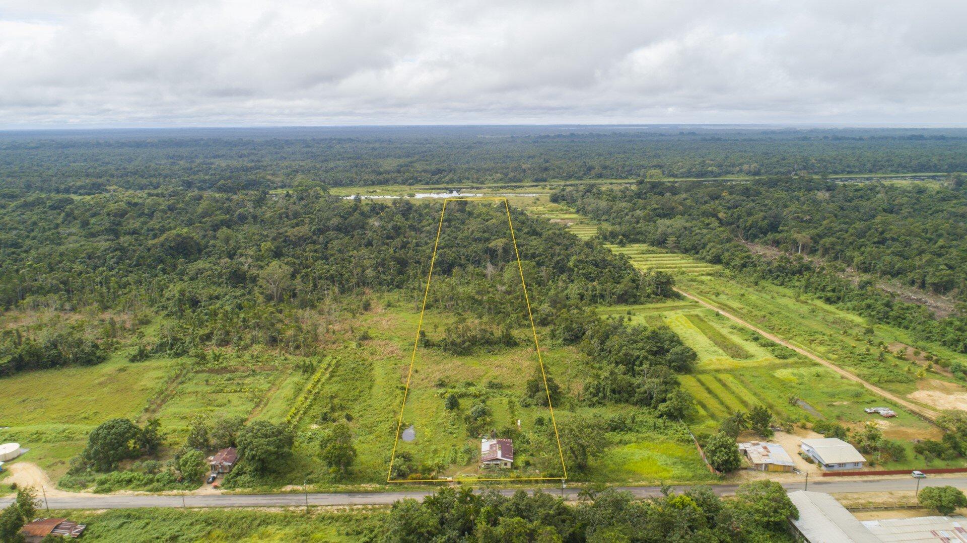 Coronieweg perc. 126 - 3.2 ha hoogwaardig tuinbouwgrond te Coronie - Surgoed Makelaardij NV - Paramaribo, Suriname